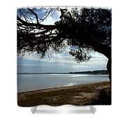 A Park With Tranquil Moments Shower Curtain