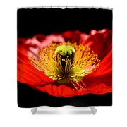 A Passion For Life Shower Curtain