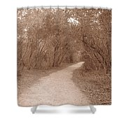 A Path In Life Shower Curtain