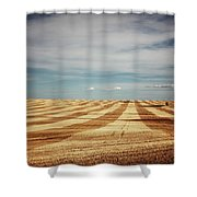 A Pattern Of Stripes Across A Farmers Shower Curtain