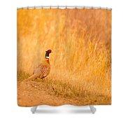 A Pheasant  Shower Curtain