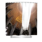 The Light Of Heaven On Earth Shower Curtain