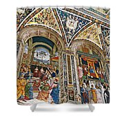 A Piece Of The Piccolomino Shower Curtain