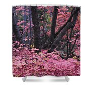A Pink Autumn  Shower Curtain