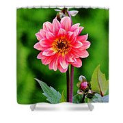 A Pink Flower Shower Curtain