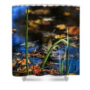 A Place Called Home Shower Curtain