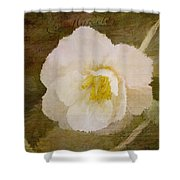 A Place Of Peace - Vintage Art Shower Curtain