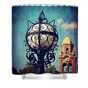 A Plaza View Shower Curtain