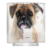 A Portrait Of A Boxer Dog Shower Curtain by Angel  Tarantella