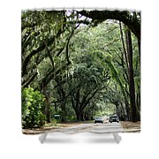 A Pretty Tree Covered Road Somewhere On Hilton Head Island Shower Curtain