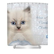 A Purrrfect Christmas Shower Curtain
