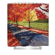 A Quiet Autumn Road Shower Curtain