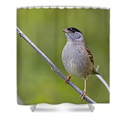 A Real Poser Shower Curtain
