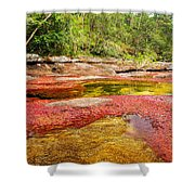 A Red And Yellow River In Colombia Shower Curtain