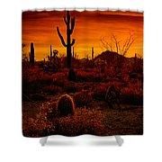 A Red Desert  Shower Curtain