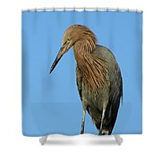 A Redhead On A Roof Shower Curtain