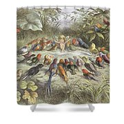 A Rehearsal In Fairy Land, Illustration Shower Curtain