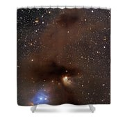 A Rich Region Of Reflection Shower Curtain