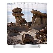 A Rock Garden Shower Curtain