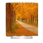 A Romantic Country Walk In The Fall Shower Curtain