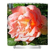 A Rose And A Rose Shower Curtain