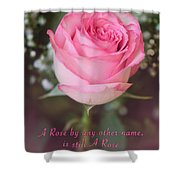 A Rose By Any Other Name Is Still A Rose Shower Curtain