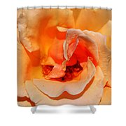 A Rose By Any Other Name... Shower Curtain