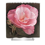 A Rose By Any Other Name.... Shower Curtain