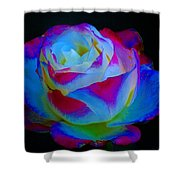 A Rose Enhanced Shower Curtain