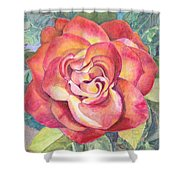 A Rose For Mom Shower Curtain