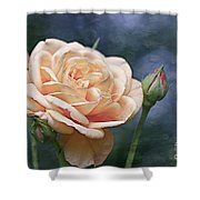 A Rose Is A Rose... Shower Curtain