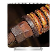 A Rusty Spring Shower Curtain