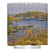 A Safe Harbor In Newfoundland Shower Curtain