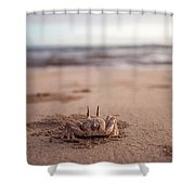 A Sand Crab Looks Out Over The Andaman Shower Curtain