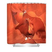 A Sculpted Walkway Shower Curtain