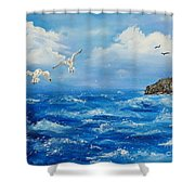 A Seagull's View George's Head Kilkee Co. Clare Shower Curtain