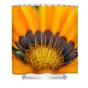 A Secret Garden Shower Curtain