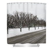 A Sequence Of Trees Shower Curtain