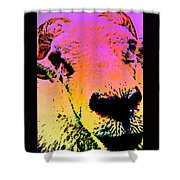 What Is So Sheep About A Kiss Shower Curtain