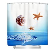 A Shell And Two Starfish Floating Shower Curtain