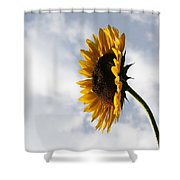 A Side Of Sunflower Shower Curtain