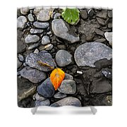 A Sign Of Fall Shower Curtain