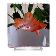 A Single Blossom Shower Curtain