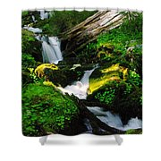 A Small Slice Of Paradise Shower Curtain