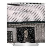 A Snowfall At The Stable Shower Curtain