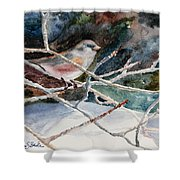 A Snowy Perch Shower Curtain
