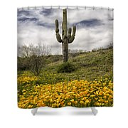 A Southwestern Style Spring Shower Curtain