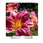 A Splash Of Lilies Shower Curtain