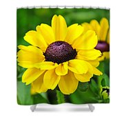 A Splash Of Sunshine Shower Curtain