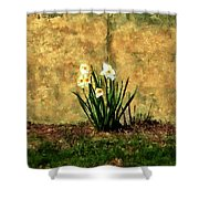 A Spot Of Spring Shower Curtain